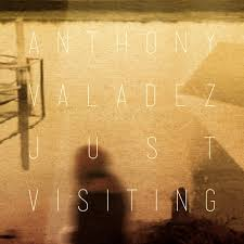 Anthony Valadez / Just Visiting
