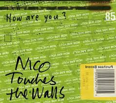 NICO Touches the Walls / How are you?